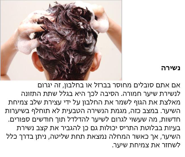 מדריך שיער 3