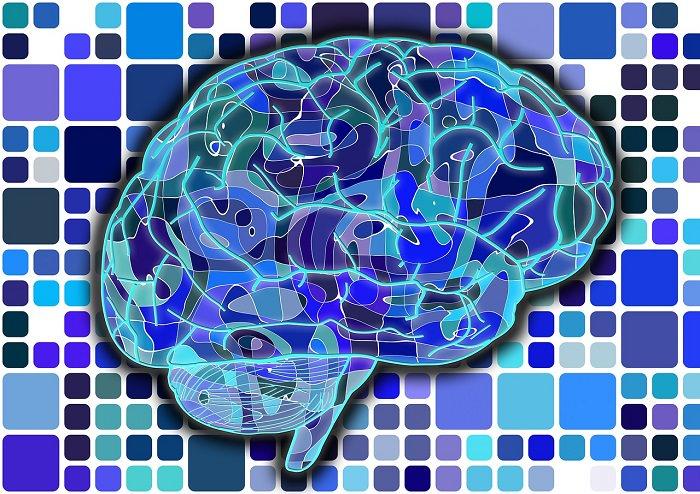 תרגילים למוח