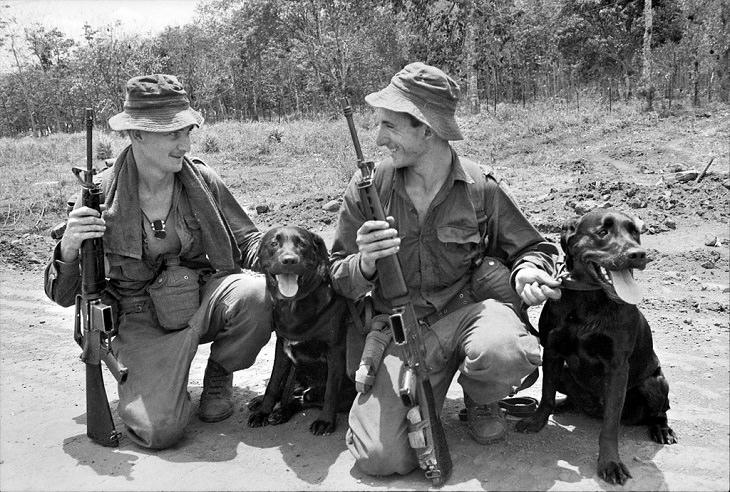 זוג גששים וכלבים