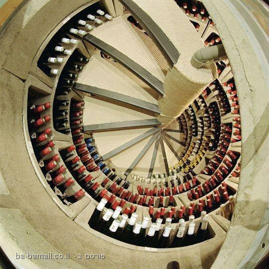 מרתף יין