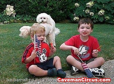 בעלי חיים, תמונה, מצחיק, ילדים