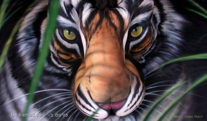 ציור גוף, טיגריס, בעלי חיים, תמונה
