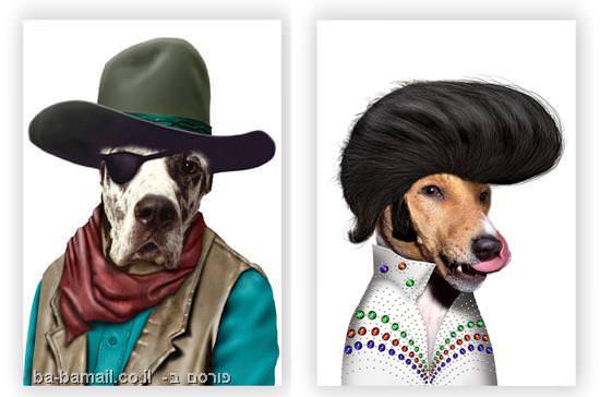 כלבים, חתולים, מפורסמים, סלבס, אלביס, ג'ון וויין