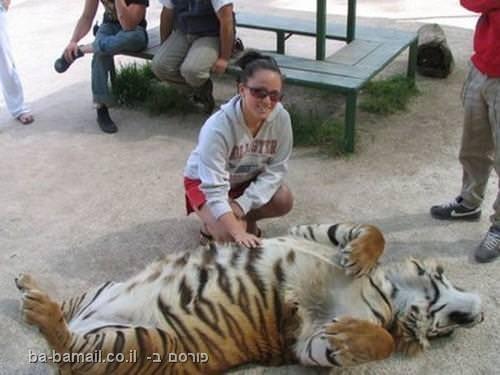 גן חיות, בואנוס איירס, ברדלס, ארגנטינה