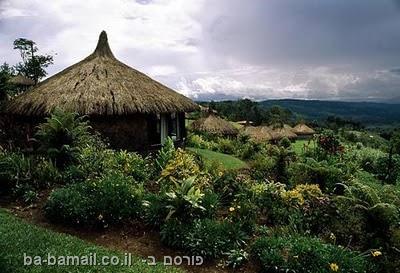 לחיות בטבע, פפואה גינאה החדשה, נופים, סכסוך עולמי