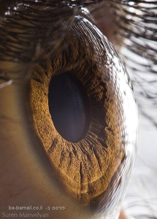 בתוך העיניים, אישון בקלוז אפ