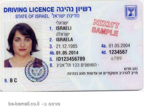 רישיון נהיגה, רישיון נהיגה בינלאומי