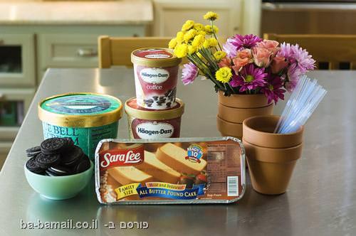 גלידה, דרך להגשת גלידה, קינוח, פרח, עוגה, אוכל,