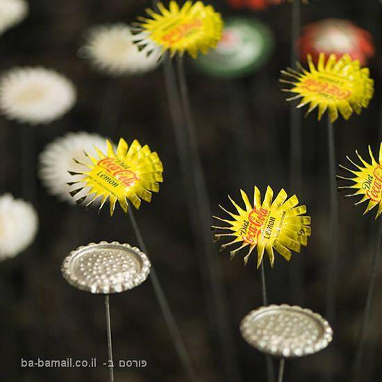 פקקים, אמנות, פרחים, יואב קוטיק