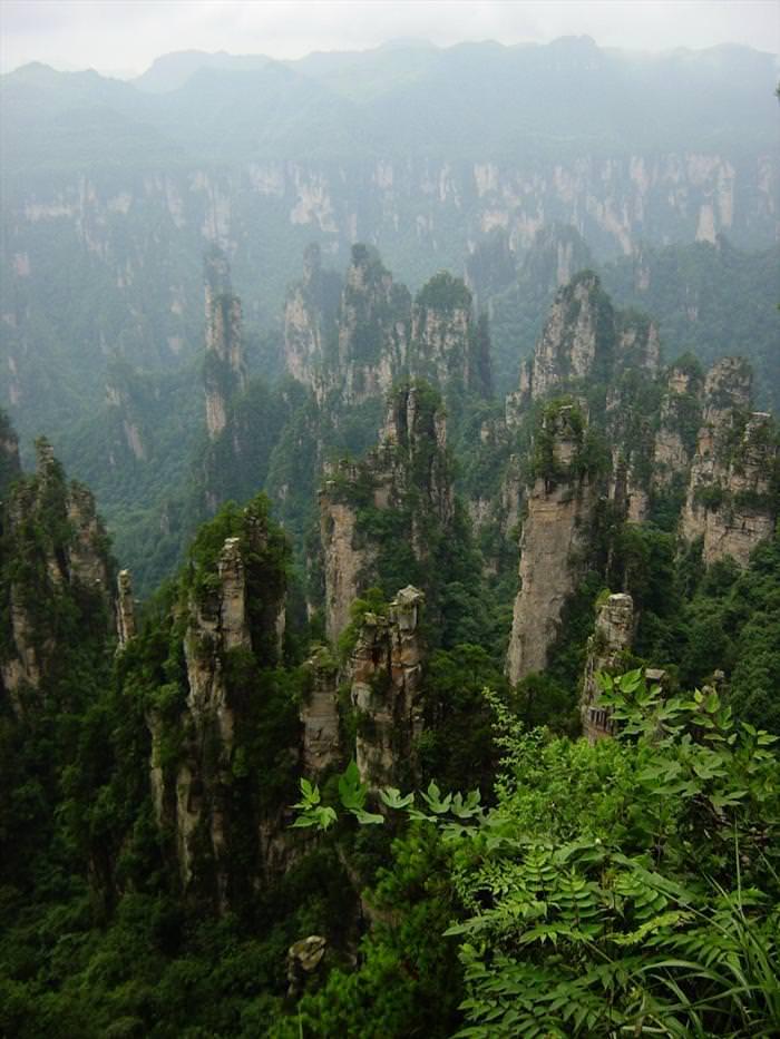 פארק-היער הלאומי זהנגג'יאג'י