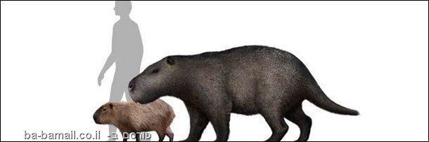 חיות ענק שנכחדו