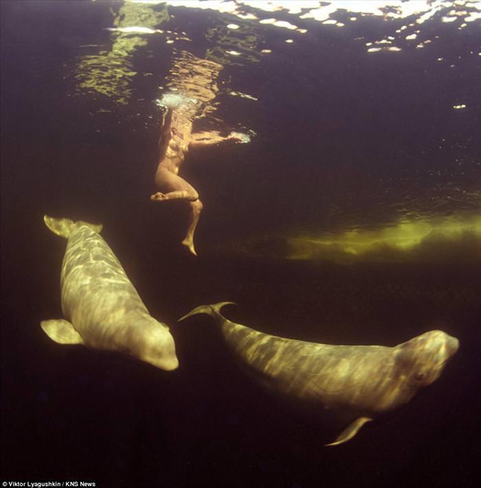 נסיכת הלוותנים: צלילה מדהימה בתנאים בלתי אפשריים