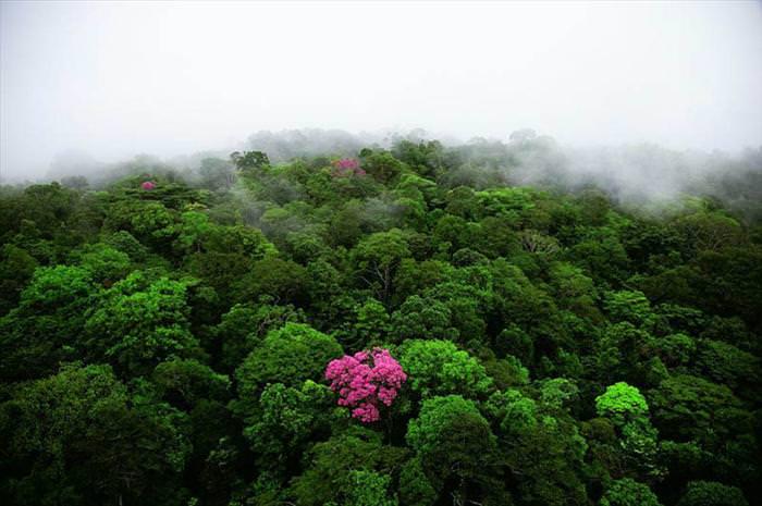 תמונות נופים וטבע