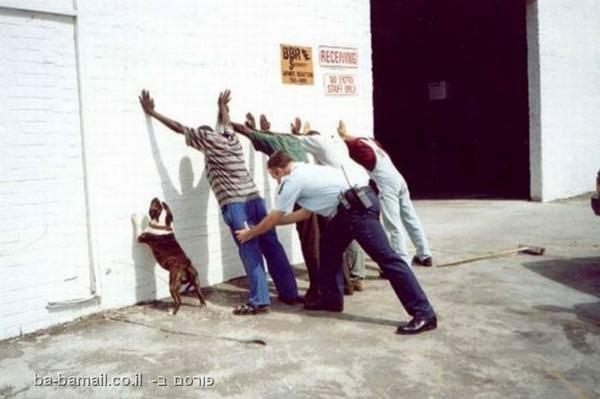 לא בלי כלבי - תמונות אנשים וכלביהם הנאמנים!