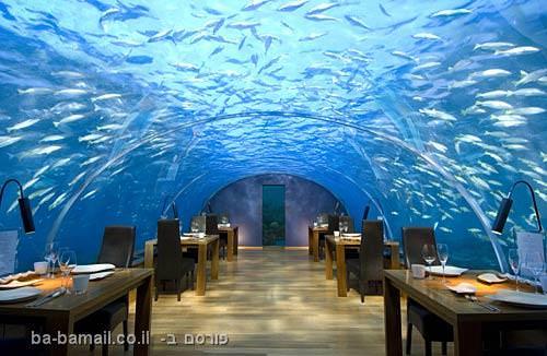 מסעדות מוזרות בעולם