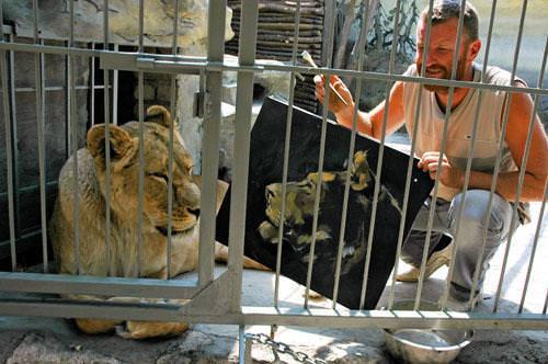 תמונות נפלאות של חיות - אוגוסט 2011