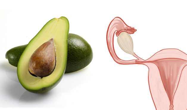 מזונות דומים לאיברי הגוף