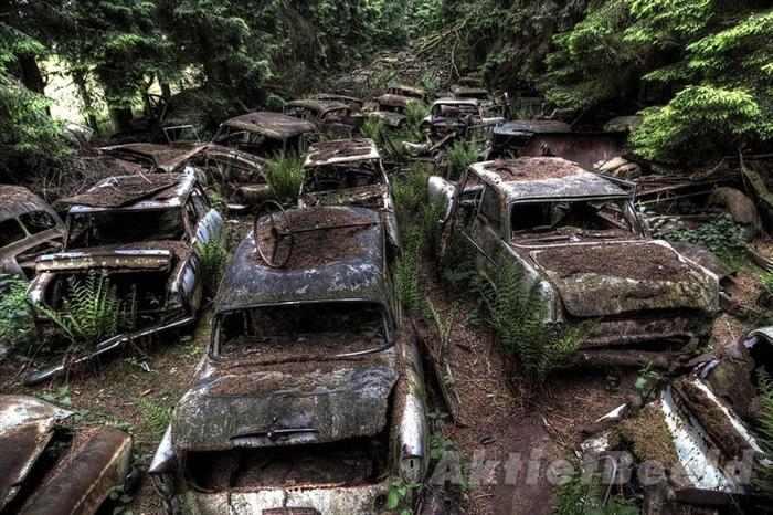 בלגיה - בית קברות למכוניות!