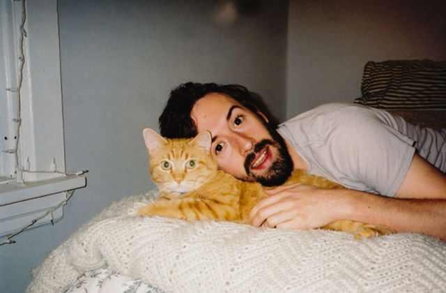 משפטי תודה עם תמונות של חתולים וכלבים