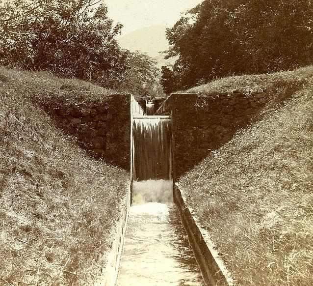 תמונות מדהימות מקינגסטון גמייקה