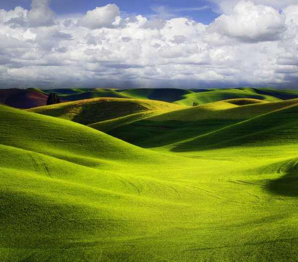 תמונות מדהימות מהטבע