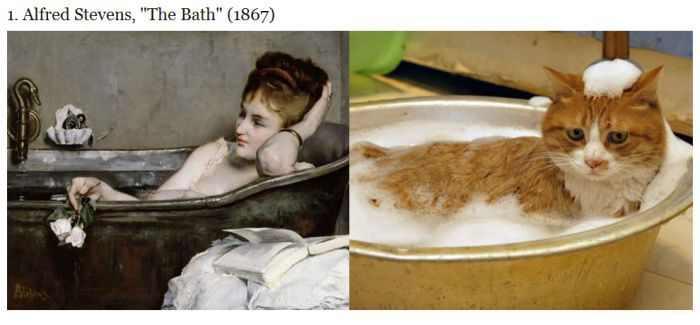 חתולים עושים אומנות