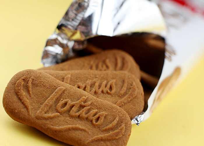 ריבועי גבינה ושוקולד - קינוח חגיגי!
