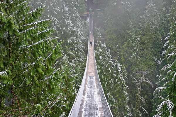 10 גשרים הכי מפחידים בעולם