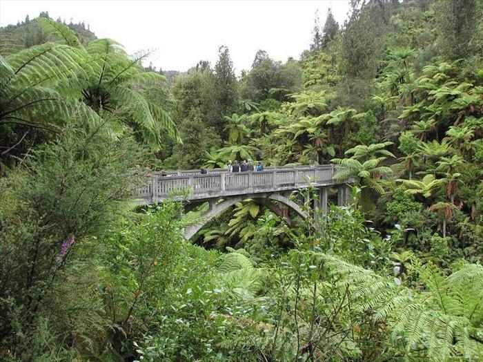 הגשר לשום מקום בניו זילנד
