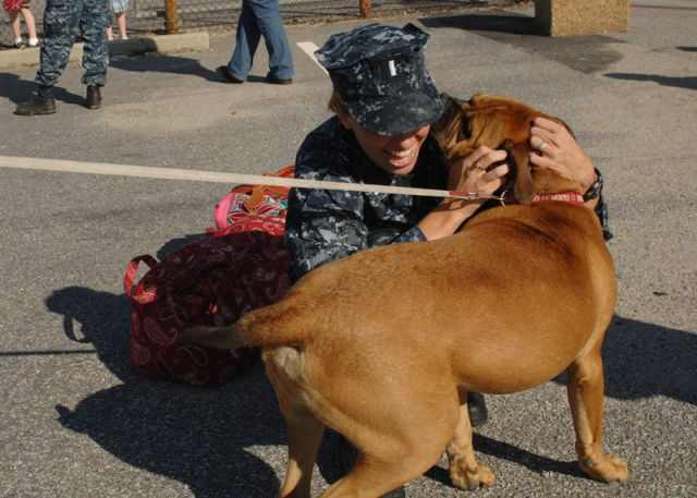 תמונות של חיילים עם בעלי חיים