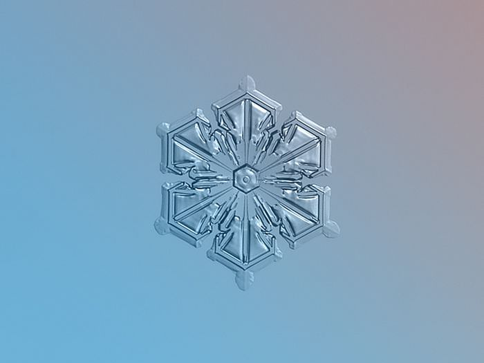 צילומי תקריב של פתיתי שלג