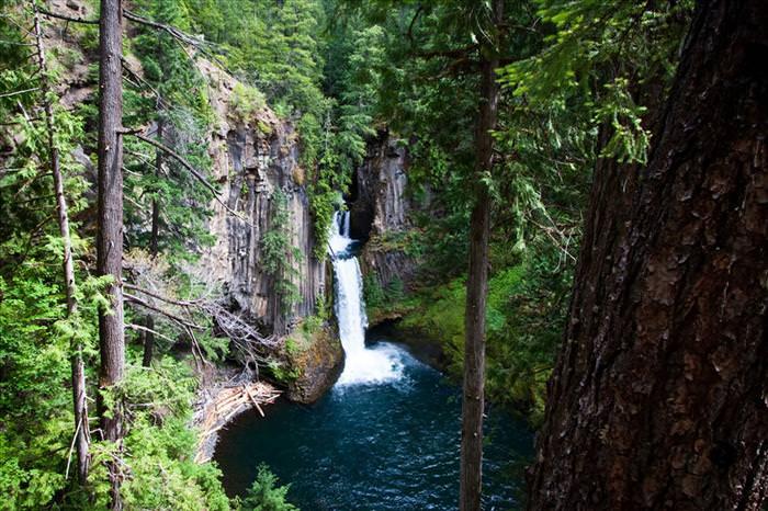 שמורות טבע בצפון מערב אמריקה