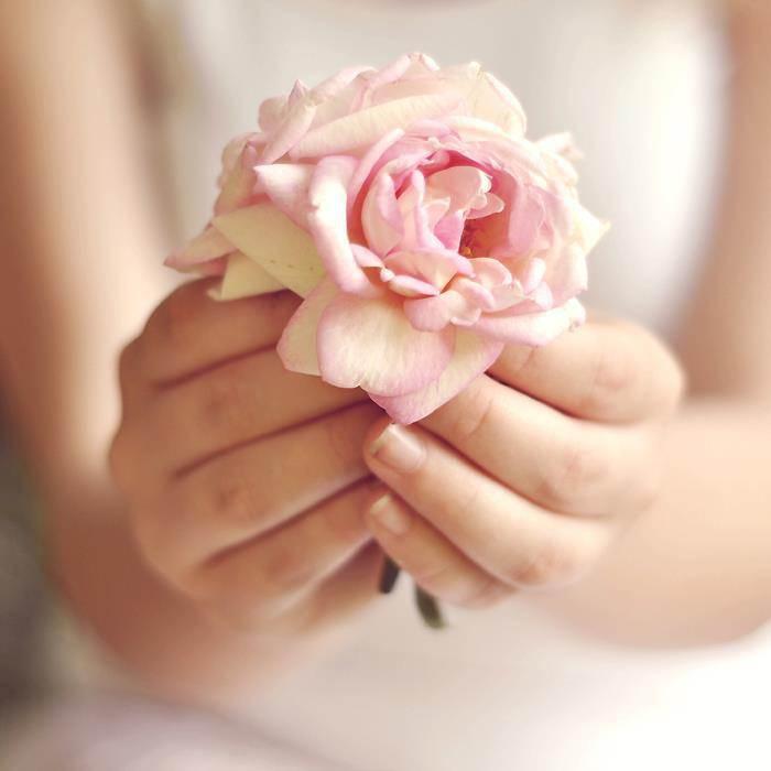 עובדות על פרחים