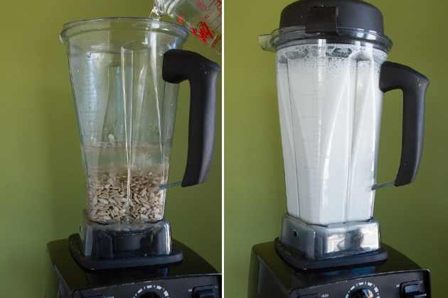 מתכון להכנת חלב מגרעיני חמניות