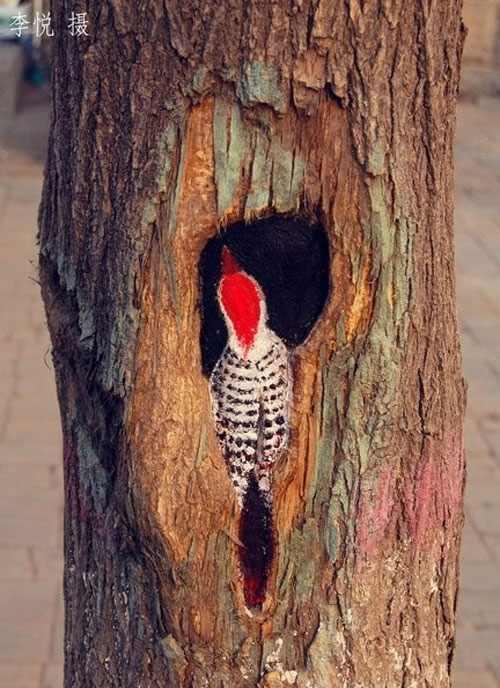 ציורים בחורים של עצים - אמנות רחוב