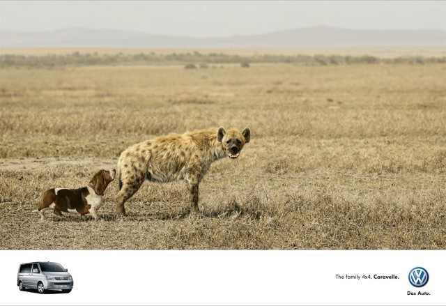 חיות בפרסומות יצירתיות ומצחיקות