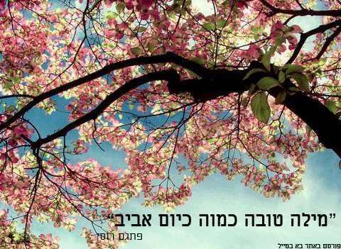 ציטוטים על האביב