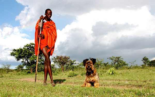 הכלב אוסקר מטייל מסביב לעולם