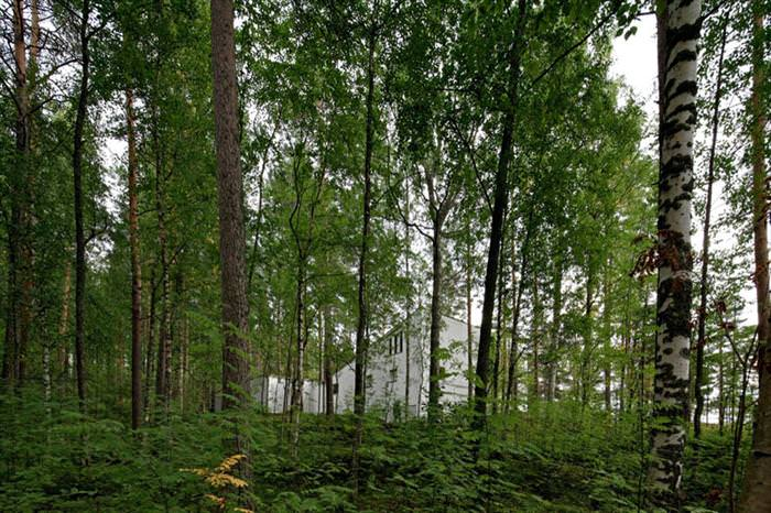 הבית החלול בפינלנד - עיצוב מקסים בלב היער
