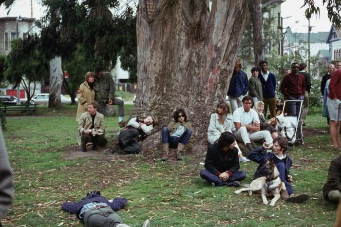 סן פרנסיסקו בשנת 1967