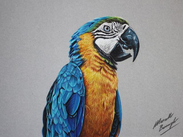 ציורים בתלת ממד