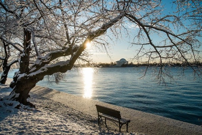 סופת שלג בארצות הברית