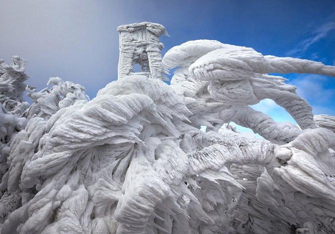 פסלי קרח