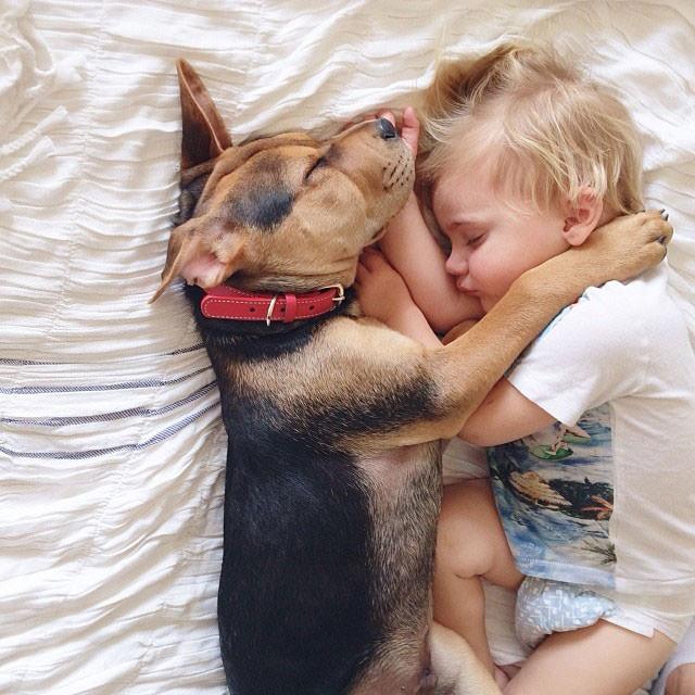 תמונות מתוקות של תינוק וגור כלבים