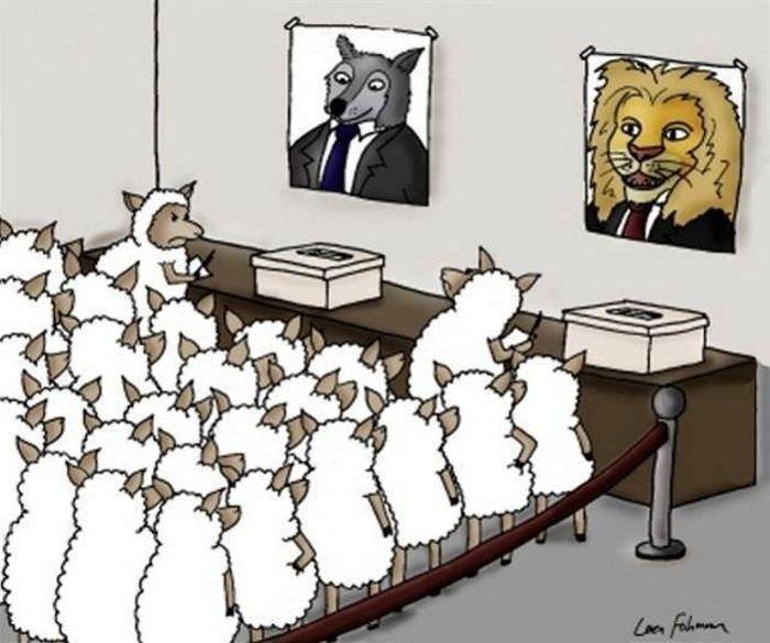 האמת על פוליטיקה