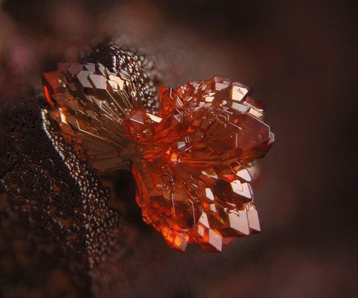 מינרלים