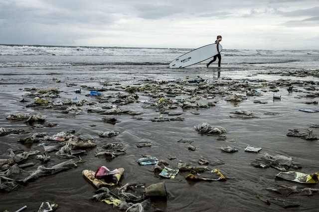 אומנות מזיהום בחוף