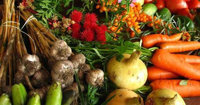 ירקות בישול