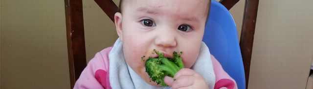מאכלים שאסור לתת לתינוקות (זמני)