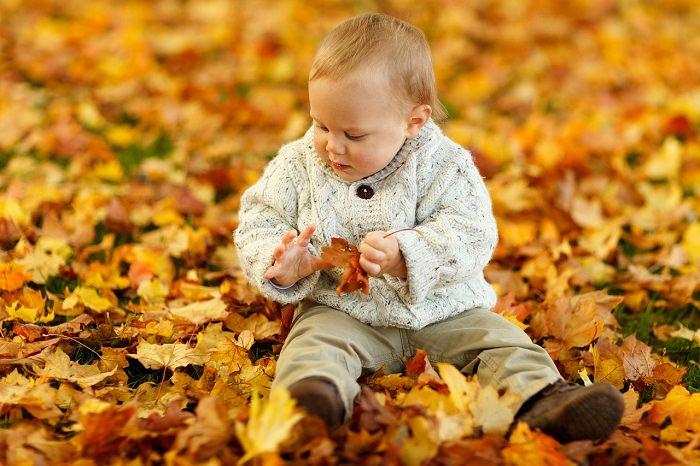 פעילויות לסתיו עם הילדים
